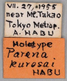 Parena kurosai Habu, 1967 (Label)